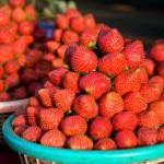 panchgani-strawberries
