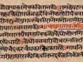p-1784-Yavatmal-pandulipi