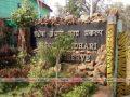 tadoba-jungal