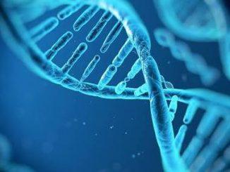 p-32789-DNA