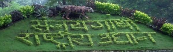 p-1794-Mumbai-Sanjay-Gandhi-National-Park-600
