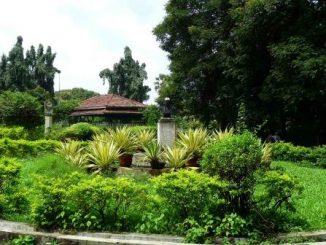 p-3857-Aarey-Park-in-Mumbai