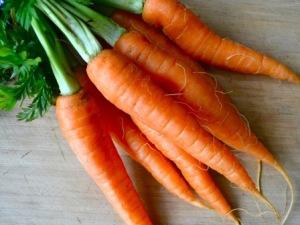 carrots-bunch-300