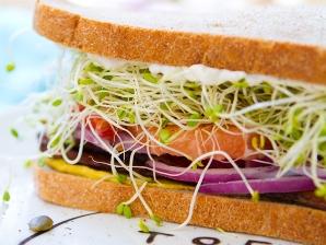 p-2552-sprout-sandwich